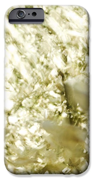 Abstract White iPhone Case by Ray Laskowitz - Printscapes
