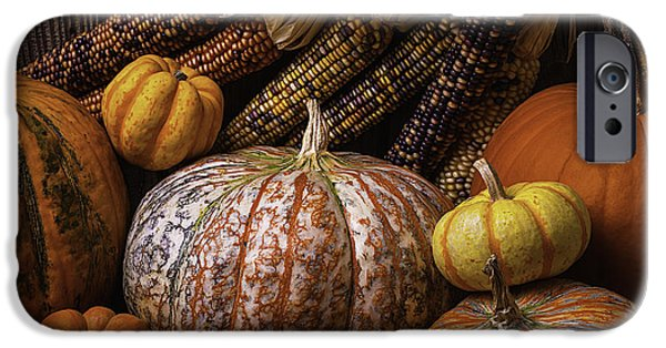 Gourd iPhone Cases - Abundance Of Autumn iPhone Case by Garry Gay
