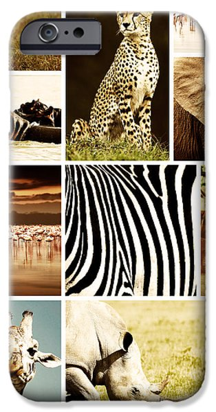 African Animals Safari Collage  iPhone Case by Anna Omelchenko