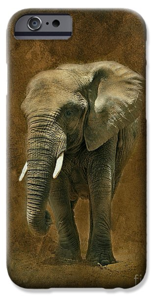 Elephants iPhone Cases - African Elephant with Textures iPhone Case by Clare VanderVeen