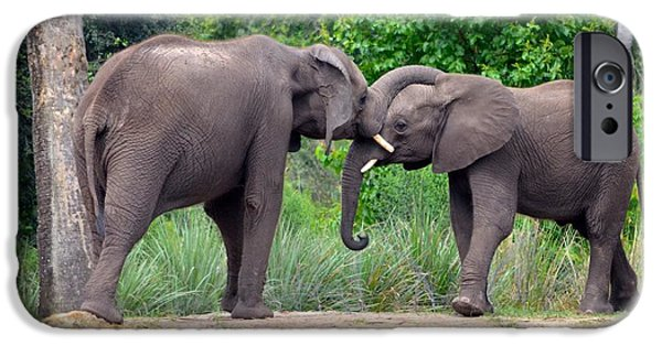 Elephants iPhone Cases - African Elephants Interacting iPhone Case by Richard Bryce and Family