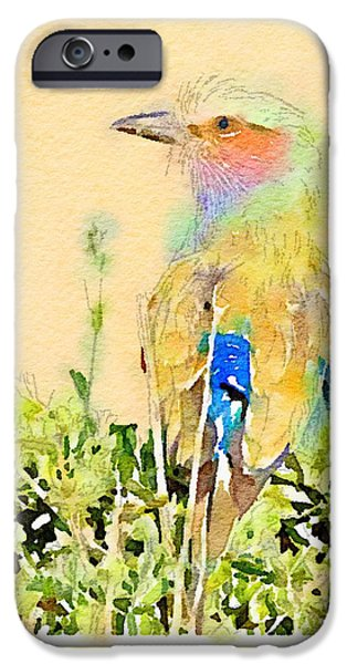 Baby Bird iPhone Cases - African Lilac Breasted Roller Digital Watercolor iPhone Case by Janet Ogren