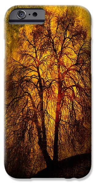 Mounds iPhone Cases - Afternoon Gold iPhone Case by Randi Grace Nilsberg