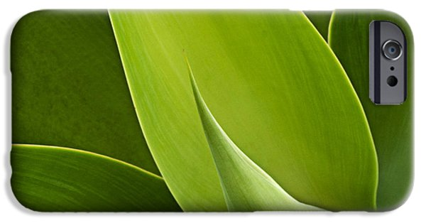 Minimalism Abstract iPhone Cases - Agave iPhone Case by Heiko Koehrer-Wagner