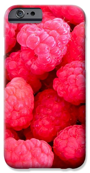 Agenda for today ... raspberry jam iPhone Case by Gwyn Newcombe