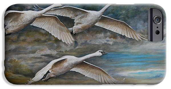 Swans... iPhone Cases - Ahead of the Storm - trumpeter swans on the move iPhone Case by Rob Dreyer AFC
