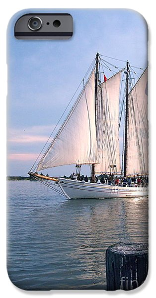 Tall Ship iPhone Cases - AJ Meerwald Sailing Up River iPhone Case by Nancy Patterson