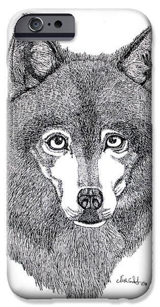 Alaskan Husky iPhone Case by Nick Gustafson