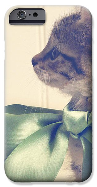 All Dressed Up iPhone Case by Amy Tyler