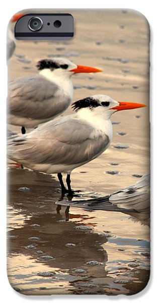 All lined up iPhone Case by Susanne Van Hulst