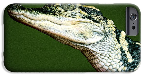 Creepy iPhone Cases - Alligator on Green iPhone Case by Jean Noren