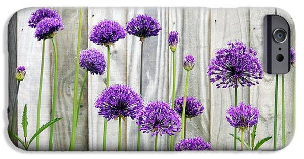 Purple Sensation iPhone Cases - Allium Purple Sensation iPhone Case by Anthony Cooper