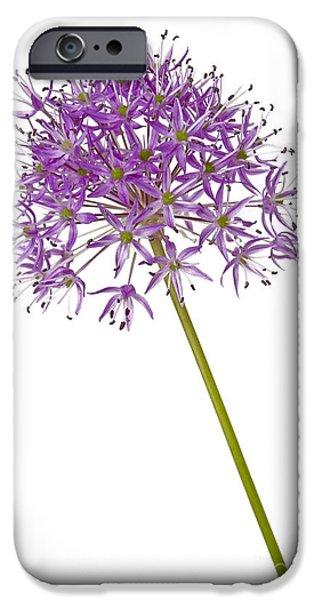 Alliums iPhone Cases - Allium iPhone Case by Tony Cordoza