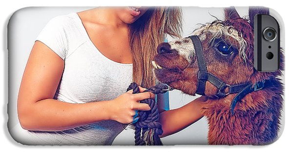 Llama iPhone Cases - Alpaca Mr. Tex and Breanna iPhone Case by TC Morgan