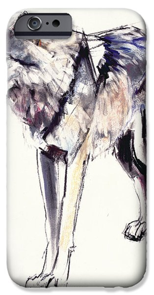 Animals Drawings iPhone Cases - Alpha iPhone Case by Mark Adlington
