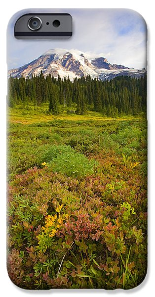 Mt Rainier iPhone Cases - Alpine Meadows iPhone Case by Mike  Dawson