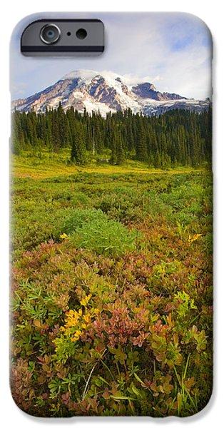 Alpine Meadows iPhone Case by Mike  Dawson