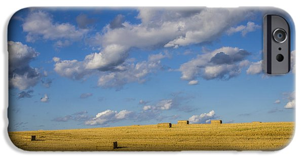 Field. Cloud iPhone Cases - American Gold iPhone Case by Joann Long
