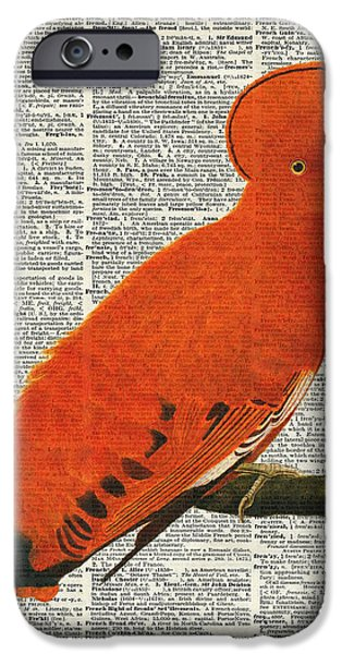 Fauna Pastels iPhone Cases - American Martinet Orange Parrot bird iPhone Case by Jacob Kuch