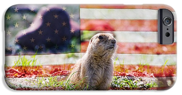 Prairie Dogs iPhone Cases - American Prairie Dog iPhone Case by James BO  Insogna