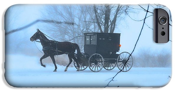 Horse And Buggy iPhone Cases - Amish Dreamscape iPhone Case by David Arment