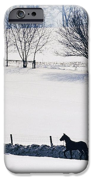 Amish Horse and Buggy in Snowy Landscape iPhone Case by Jeremy Woodhouse
