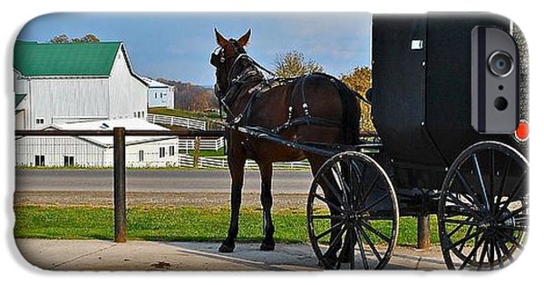 Horse And Buggy iPhone Cases - Amish Horse Buggy and Farm iPhone Case by Frozen in Time Fine Art Photography