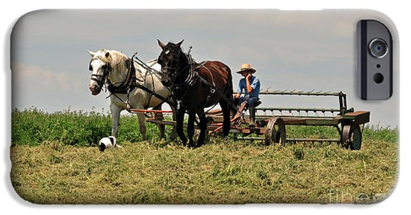 Dogs iPhone Cases - Amish Life iPhone Case by Davids Digits