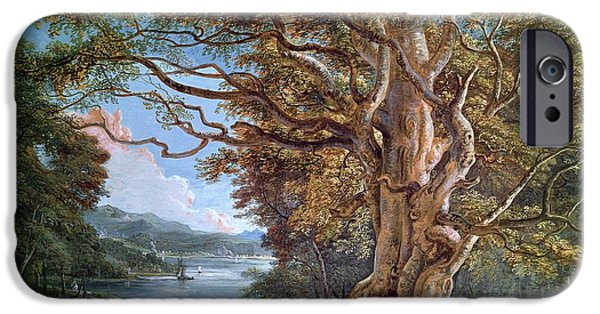 Tree Roots Paintings iPhone Cases - An Ancient Beech Tree iPhone Case by Paul Sandby