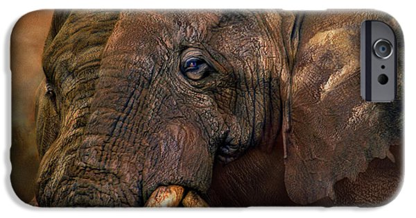 Elephant iPhone Cases - Ancient Giants iPhone Case by Carol Cavalaris