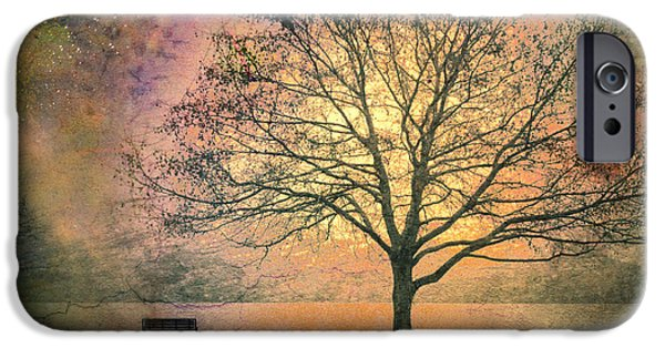 Tree iPhone Cases - And the Morning is Perfect in all Her Measured Wrinkles iPhone Case by Tara Turner
