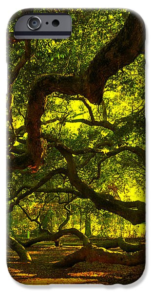 Angel Oak Limbs 2 iPhone Case by Susanne Van Hulst