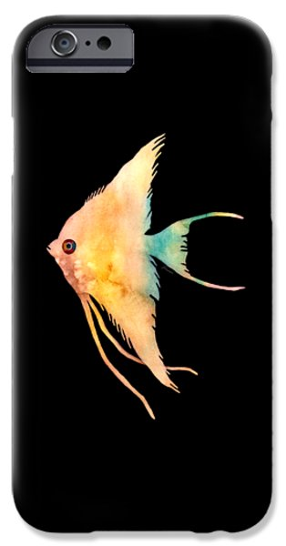 Zoology Paintings iPhone Cases - Angelfish II - solid background iPhone Case by Hailey E Herrera
