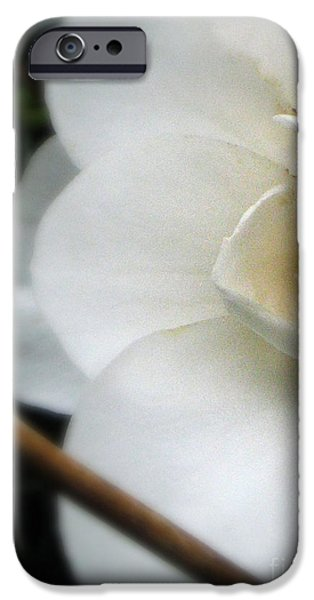 Angelic Camellia iPhone Case by Mg Rhoades