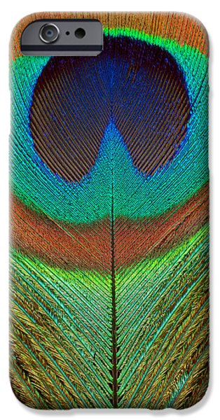 Scanography iPhone Cases - Animal - Bird - Peacock Feather iPhone Case by Mike Savad