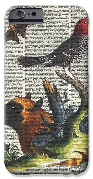 Watercolor With Pen Mixed Media iPhone Cases - Animals Zoology old illustration over a Old Dictionary Page iPhone Case by Jacob Kuch