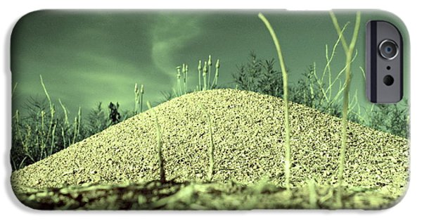 Mounds iPhone Cases - Ant Returns Home After a Long Day iPhone Case by Tim Richards