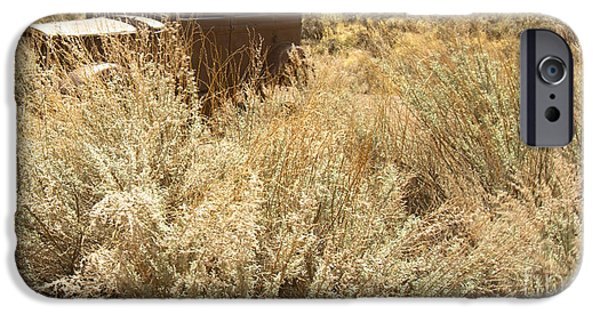 Model iPhone Cases - Antique Car in Grasses iPhone Case by Karen Foley
