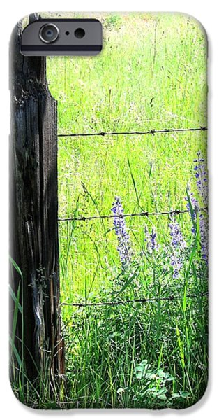Old Fence Posts iPhone Cases - Antique Fence Post iPhone Case by Will Borden