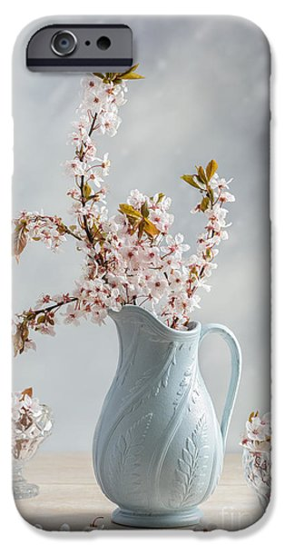 Edwardian iPhone Cases - Antique Jug With Blossom iPhone Case by Amanda And Christopher Elwell