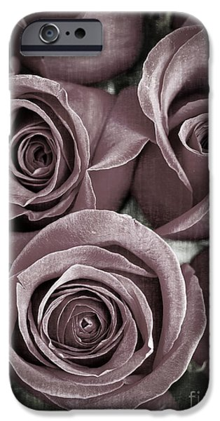Muted iPhone Cases - Antique Roses iPhone Case by Edward Fielding