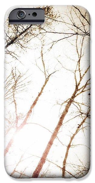 Torn iPhone Cases - Appalachian Sun - 2  iPhone Case by Anita Faye