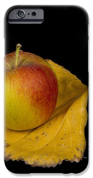 Apple Harvest Autumn Leaf iPhone Case by James BO  Insogna