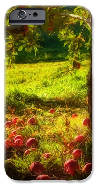 Apple Picking iPhone Case by Joann Vitali