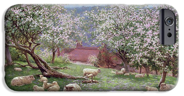 Apple Trees iPhone Cases - Appleblossom iPhone Case by William Biscombe Gardner