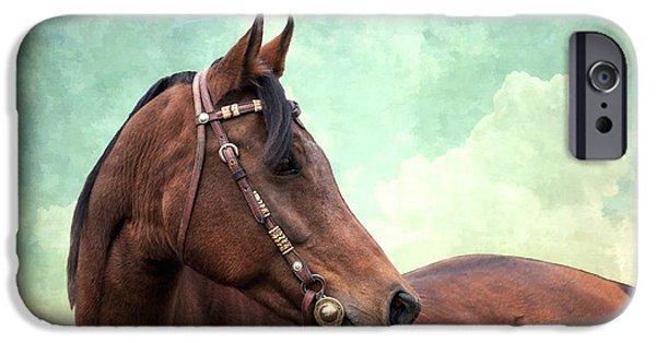 Horse iPhone Cases - Arabian Mare with Headstall iPhone Case by Karen Slagle