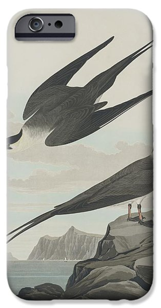 Arctic Drawings iPhone Cases - Arctic Jager iPhone Case by John James Audubon