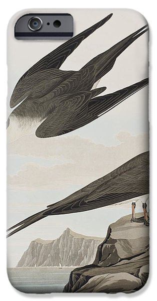 Arctic Drawings iPhone Cases - Arctic Yager iPhone Case by John James Audubon