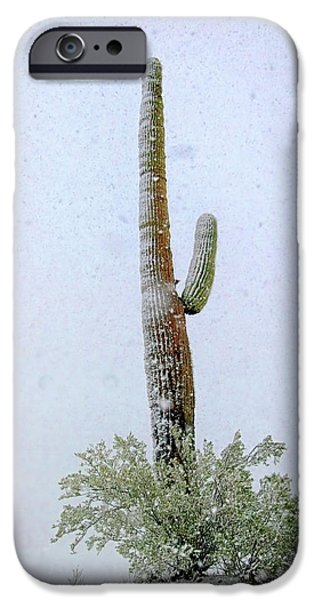 Winter Storm iPhone Cases - Arizona Snow Storm iPhone Case by Barbara D Richards