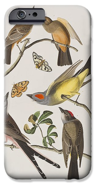 Flycatcher iPhone Cases - Arkansaw Flycatcher Swallow-Tailed Flycatcher Says Flycatcher iPhone Case by John James Audubon